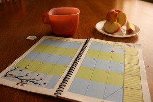 Homeschool Planner, Simply Planned